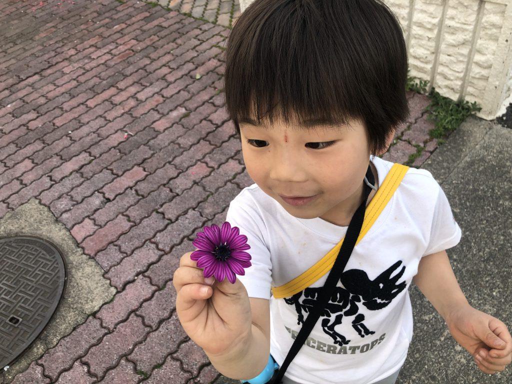 お花探し🌼